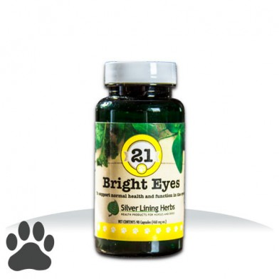Dog Eye Health